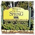 spring-branch-77055